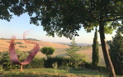 Art et nature : «La Casa degli Ulivi»