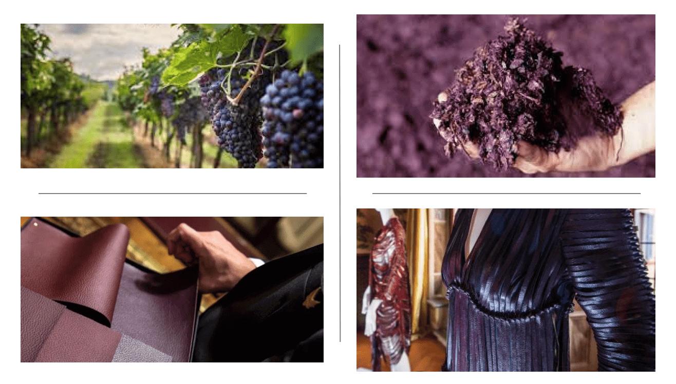 vin et cuir